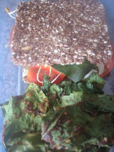 "Raw vegan ""cheese"" sandwich with BBQ kale chips"