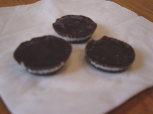 Raw vegan chocolate mints