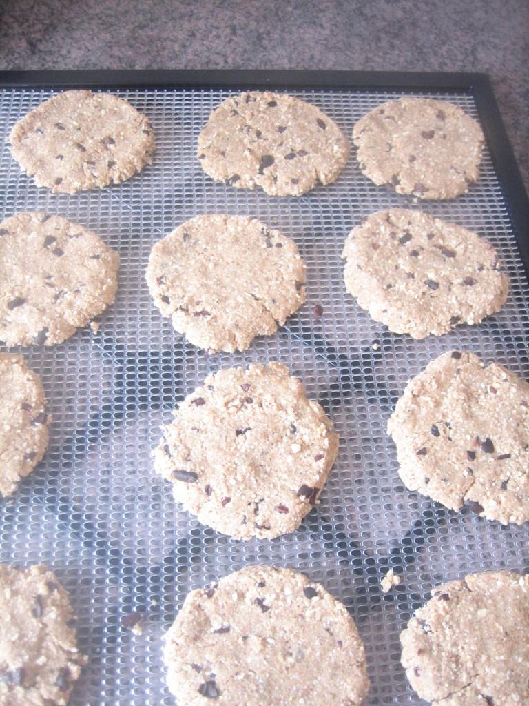 raw, vegan, gluten-free chocolate chip cookies